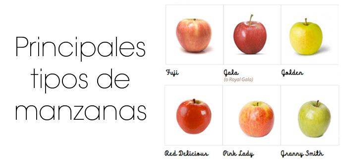 Principales tipos de manzanas
