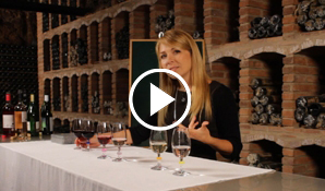 Meritxell Falgueras iniciación a la cata vino